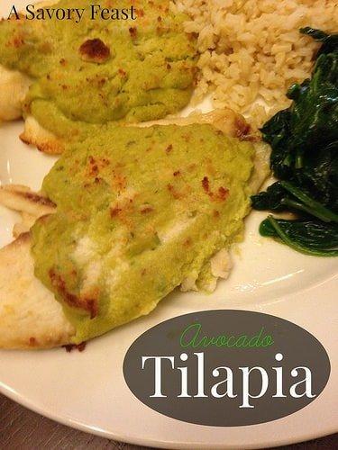 Avocado Tilapia