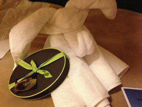Towel Animals Royal Caribbean