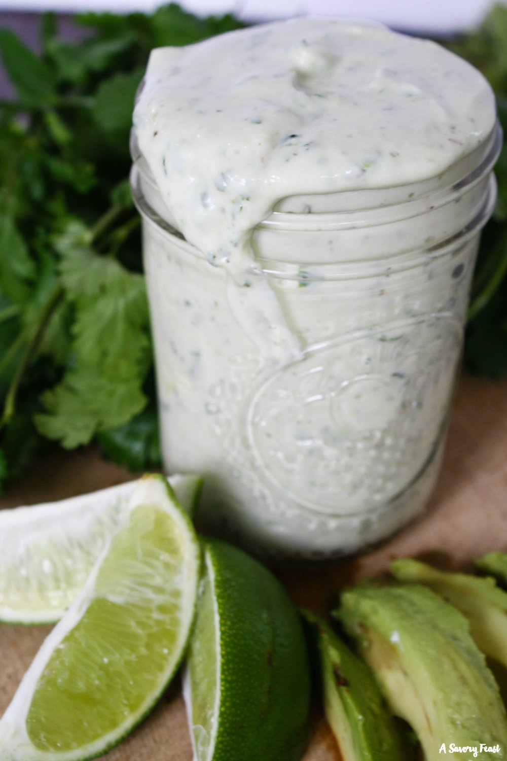 If you haven't tried making your own salad dressings, you're missing out! This Avocado Ranch Salad Dressing is so simple to make and you probably have most of the ingredients in the house. Use it on your favorite salad or as a dip for veggies!