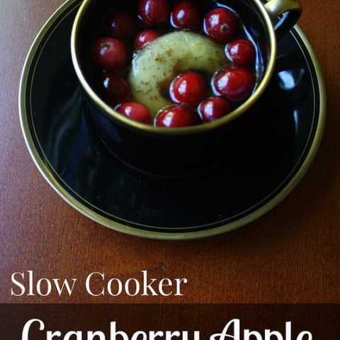 Slow Cooker Cranberry Apple Cider