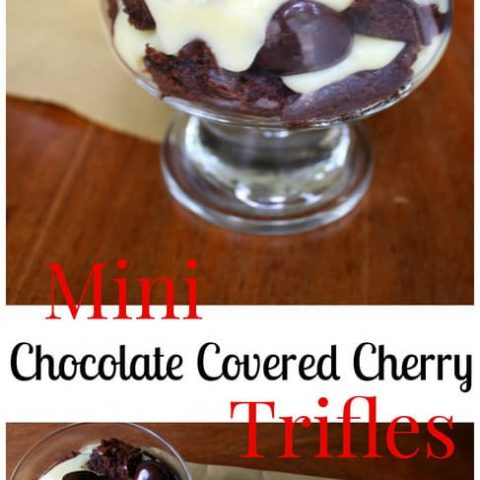 Mini Chocolate Covered Cherry Trifles with DOVE® Fruit