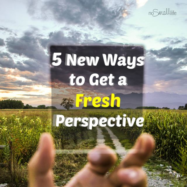 5-new-ways-to-get-a-fresh-perspective-nosmalllife