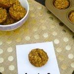 Apple Oat Muffins 1