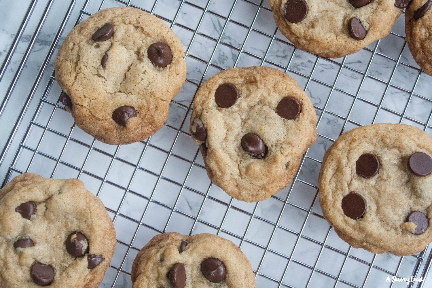 The perfect afternoon snack! Vegan Chocolate Chip Cookies.