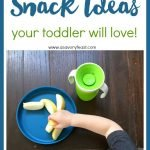 10 Healthy Snack Ideas Your Toddler Will Love