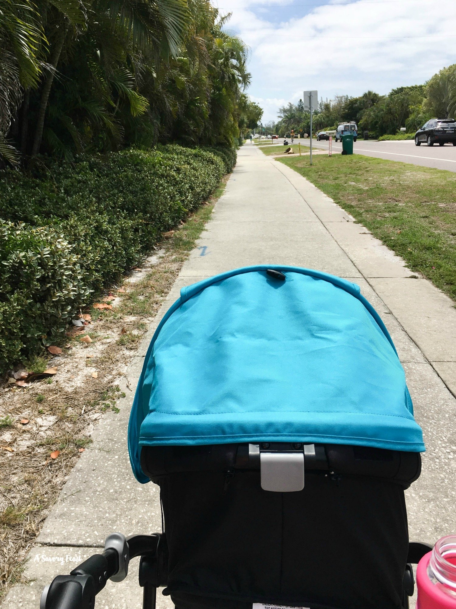 Walking trails on Longboat Key