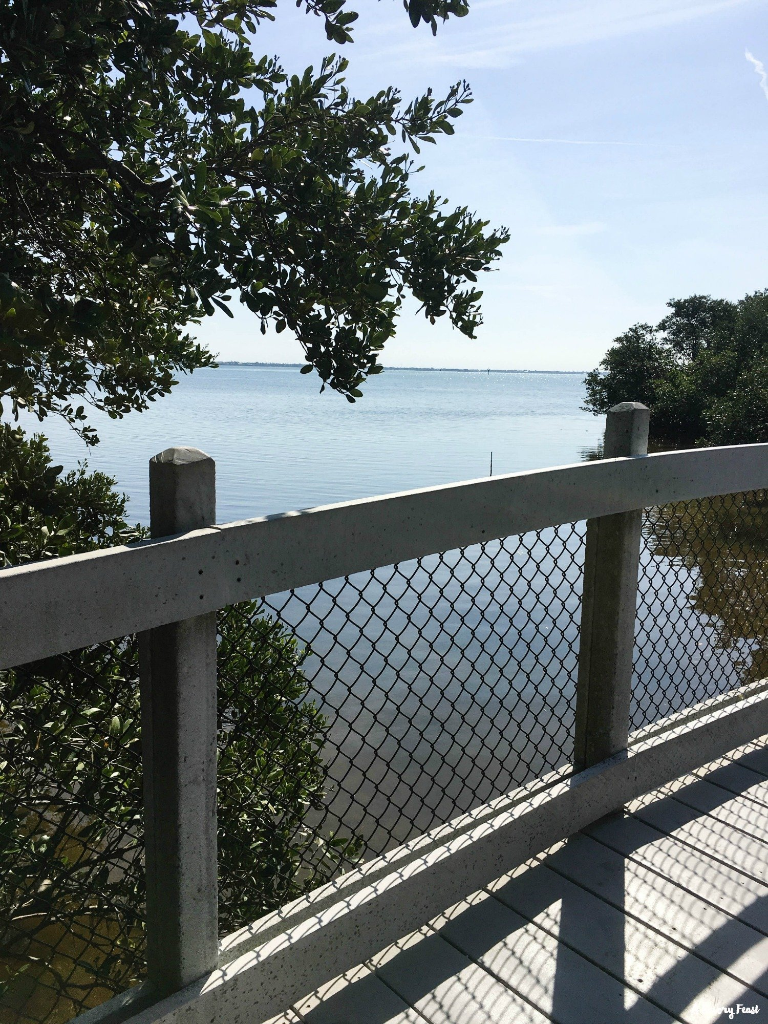 Explore Joan M. Durante park on Longboat Key