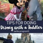 Tips for Doing Disney World with A Toddler (While Pregnant!)