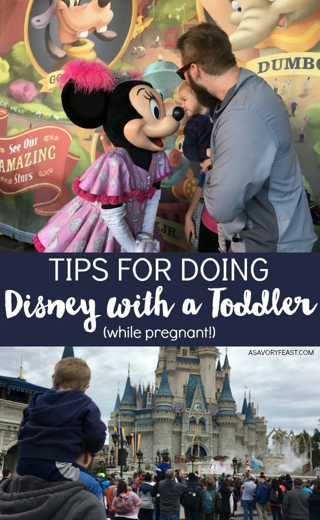 Disney with young kids can be SO much fun! Take advantage of going with your toddler while the magic is so alive for them. Here are some helpful tips for doing Disney with a toddler (and while pregnant) that will make your trip easier, less stressful and more fun. What to pack for Disney with a toddler and items that will make the day easier when you are pregnant!